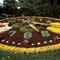 horloge fleurie / floral clock